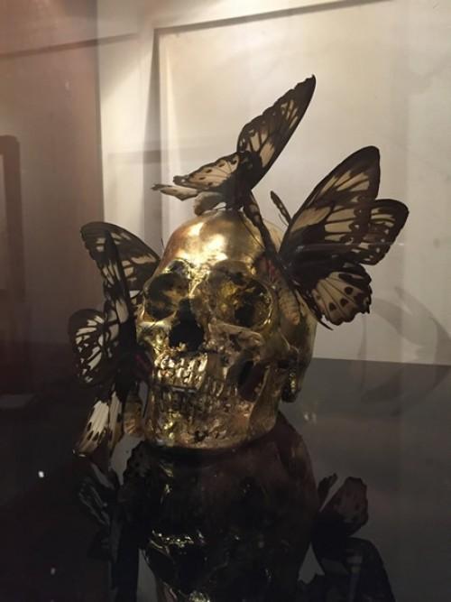 Défiscaliser avec les œuvres de Philippe PASQUA - Papillons noirs