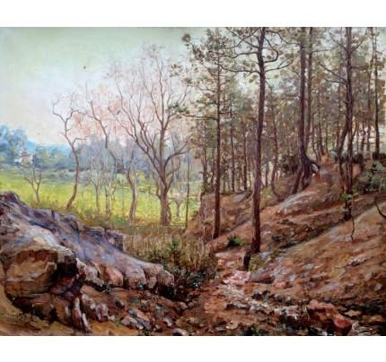 Louis PASTOUR, forêt